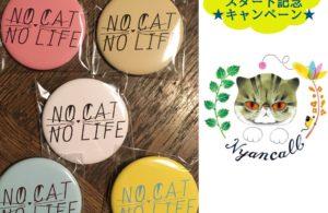 【終了しました】「猫暮らし体験」スタート記念キャンペーン☆「NO CAT NO LIFE」缶バッジ プレゼント企画