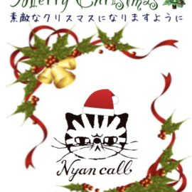 Merry Christmas o.:*。.:☆